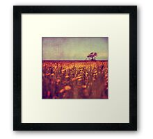 lying in a field of daisies Framed Print