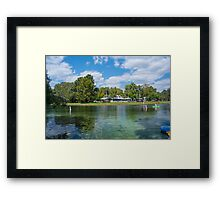 Fall Florida Afternoon Fun Framed Print
