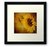 Golden Sunburst Framed Print