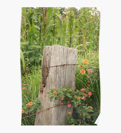 Fence Post and Barbed Wire Poster