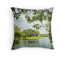 Framing the Rainbow River Throw Pillow