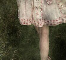 The Summer Dress by Sarah Jarrett