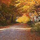 Fall colors over a Michigan back road by DArthurBrown