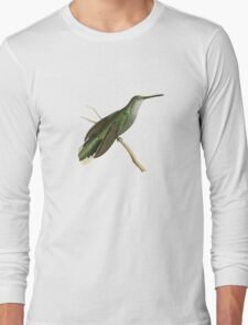 Grey Sickle-winged Humming Bird Illustration by William Swainson Long Sleeve T-Shirt