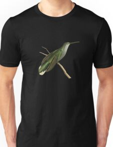 Grey Sickle-winged Humming Bird Illustration by William Swainson Unisex T-Shirt