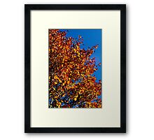 Back Roads and Fall Colors Framed Print