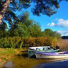 Loch Ard Boats by Jim Wilson