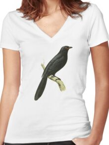 Red-lipped Flycatcher Bird Illustration by William Swainson Women's Fitted V-Neck T-Shirt