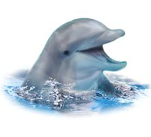 Happy Dolphin by DolphinPod