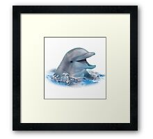 Happy Dolphin Framed Print