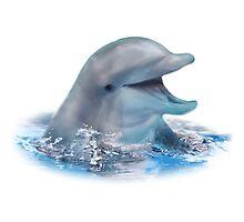 Happy Dolphin Photographic Print