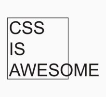 CSS Is Awesome by Sandy W