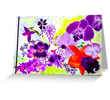 Orchids in mauve Greeting Card