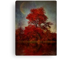 Lunar Companion Canvas Print