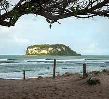 Whangamata Bar Surfing by tonyfoster