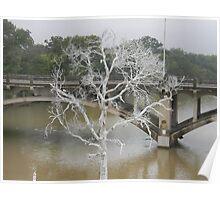 Dead White Tree Memorial Poster