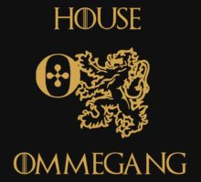 House Ommegang by mlny87