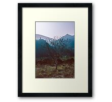 Nera Valley 19840409 0024 Framed Print