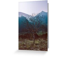 Nera Valley 19840409 0024 Greeting Card