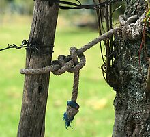 Rope on a Fence Post by rhamm