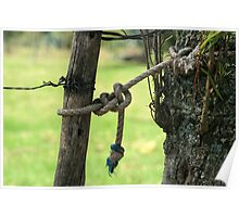 Rope on a Fence Post Poster