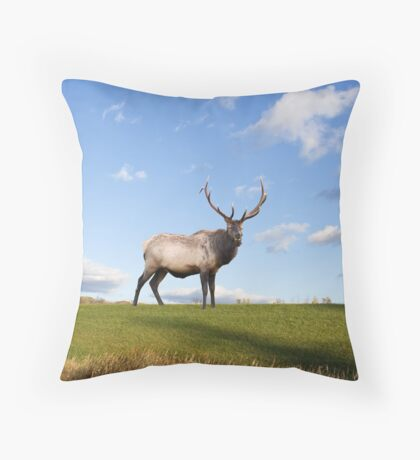Elk on Hillside Throw Pillow