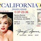 Marilyn Monroe Driver's License by Sebastian Sindermann