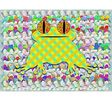 Frog In A Sea Of Petals Photographic Print