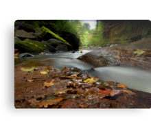 """Autumn leaves are falling"" Metal Print"