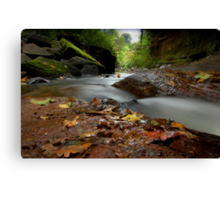 """""""Autumn leaves are falling"""" Canvas Print"""