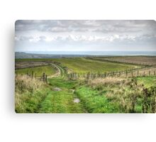 South Downs - October 2013 Canvas Print