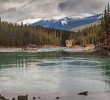 Saskatchewan River by Ron Finkel