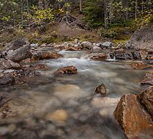 Beauty Creek by Ron Finkel