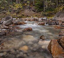Beauty Creek by Ron Finkel