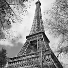 Paris in Springtime by Ladedadeda