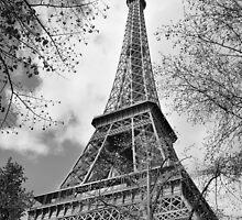Paris in Springtime by Ladedadeda
