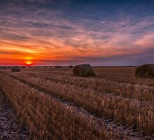 Saskatchewan Sunrise 4302_13 by Ian McGregor