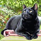 Black Cat by marksatchwillart