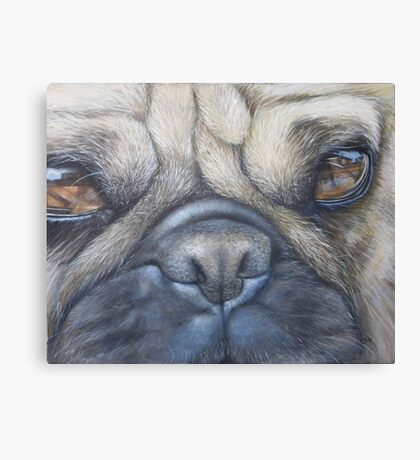 Pug face Canvas Print
