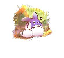 Totoro II Photographic Print