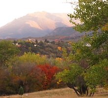 October morn' in Garden of the Gods (Colorado Springs) by dfrahm