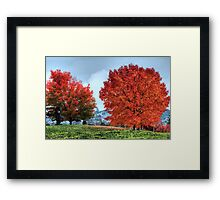 Sam Smith Park - Seattle Framed Print
