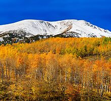 Colorado Rocky Mountain Independence Pass Autumn Pano 2  by Bo Insogna