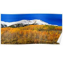 Colorado Rocky Mountain Independence Pass Autumn Pano 2  Poster