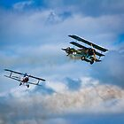 Dogfight by vivsworld