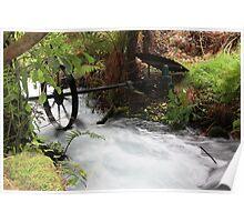 Bush stream generator Poster