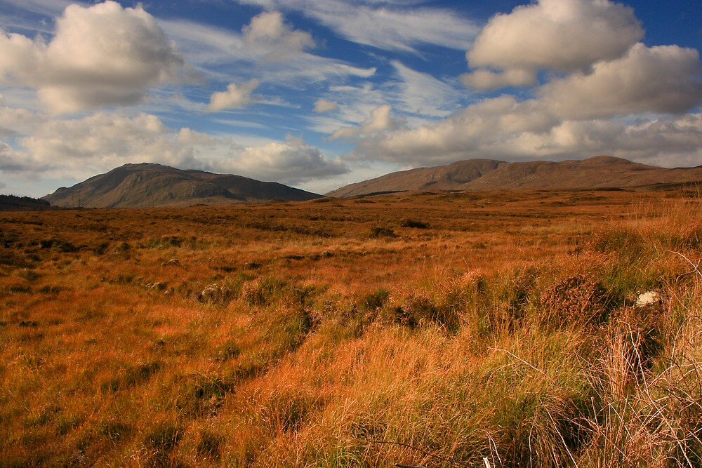 Bluestacks From The East by Adrian McGlynn