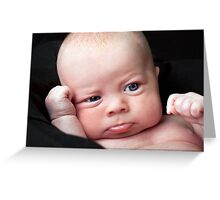 Remy - 5 weeks Greeting Card