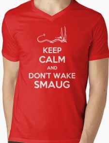 Keep Calm and Don't Wake Smaug Mens V-Neck T-Shirt