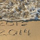 Seashore 2014 New Year by Maria Dryfhout